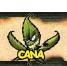 Le forum des Canas !